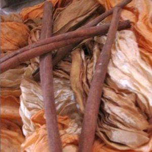 Zimt Cinnamomum